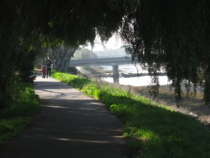 The Rose Creek Bike Path