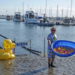 Volunteers get the rubber ducks ready to enter the race track. Photo by San Diego EarthWorks.