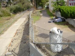 Bike path in Lower Rose Creek. Photo: San Diego Earthworks