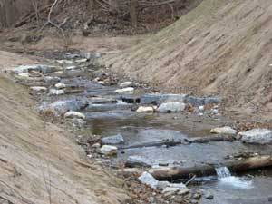 Step creeks are one example of restoration strategies that can help reduce the speed of water moving within the watershed.